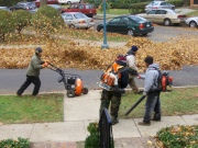 landscapers-using-leaf-blowers-by-joe_shlabotnik