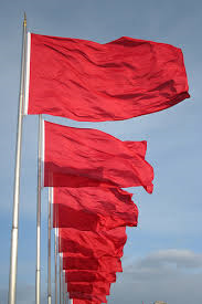 dozen red flags